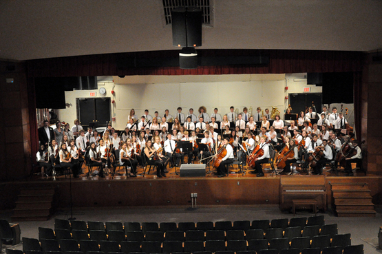 The southtowns youth orchestra home for Orchestra house